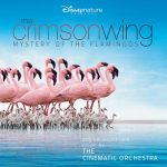 Arrival of the Birds موسیقی شاهکار مستند سرخبال: اسرار فلامینگوها